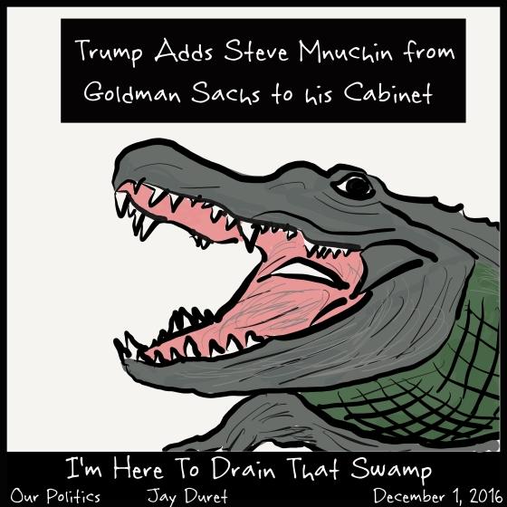 Swamp December 1, 2016