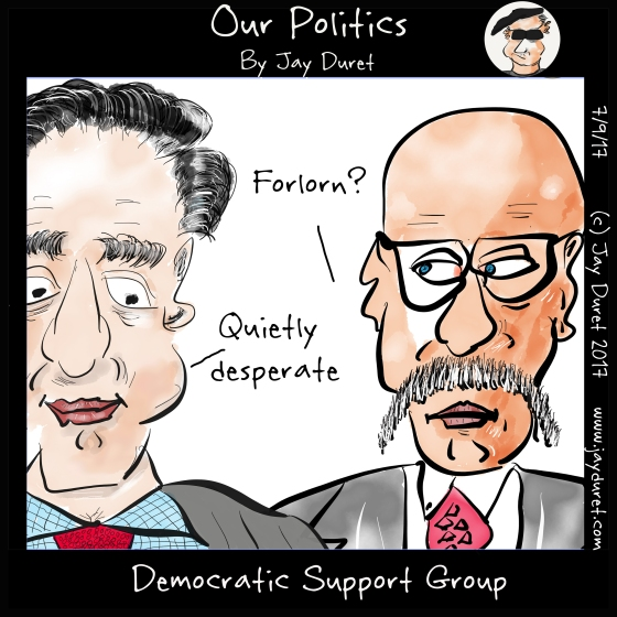 Democratic Support Group
